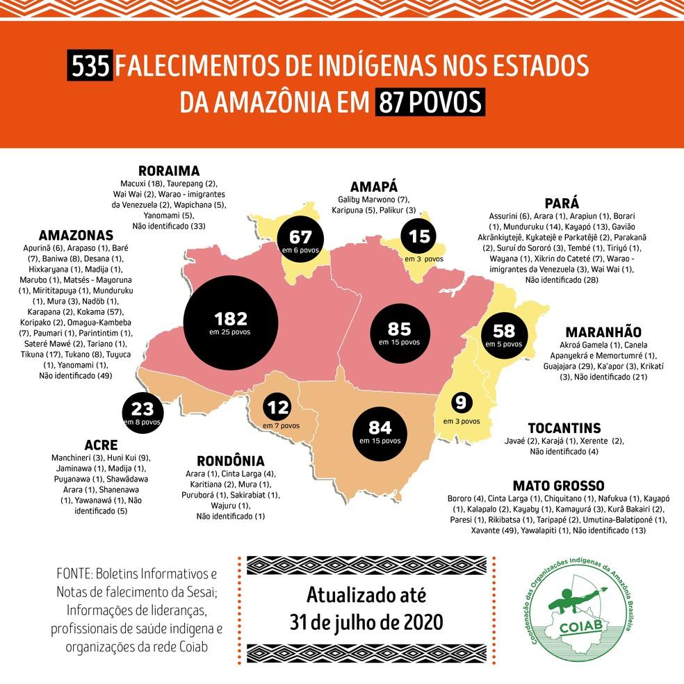 Rondônia registra 12 mortes entre indígenas, segundo dados da Coiab — Foto: Coiab/Reprodução