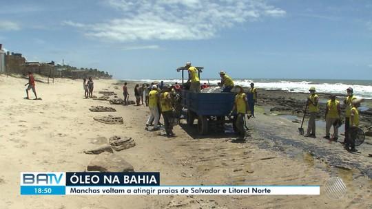 Ministro do Meio Ambiente encontra representantes da Marinha e Ibama para discutir óleo