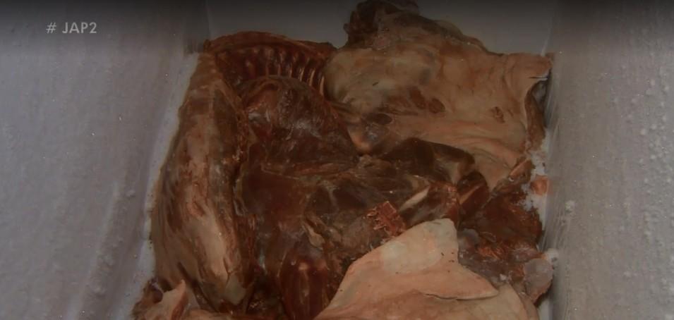 Apreensão de carne de animal silvestre chega a mais de 1 tonelada em 2019, no AP - Notícias - Plantão Diário