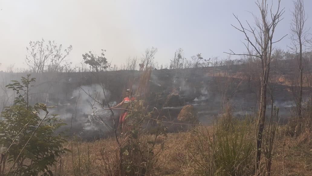 Bombeiros combatem mais de 10 incêndios em vegetação nesta quinta em Barbacena  - Notícias - Plantão Diário