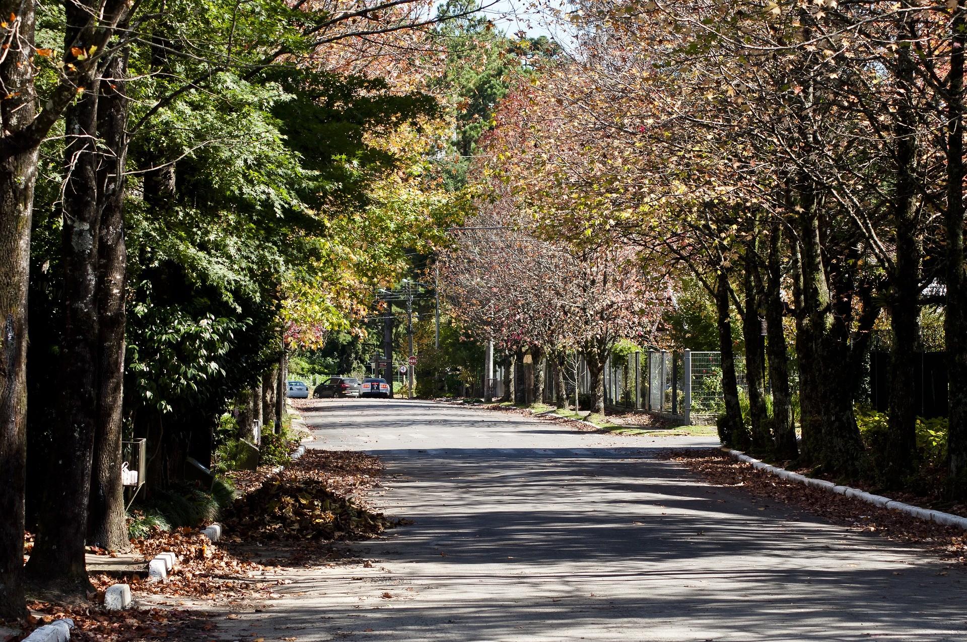 Outono começa nesta quarta-feira; veja previsão para todas as regiões - Noticias