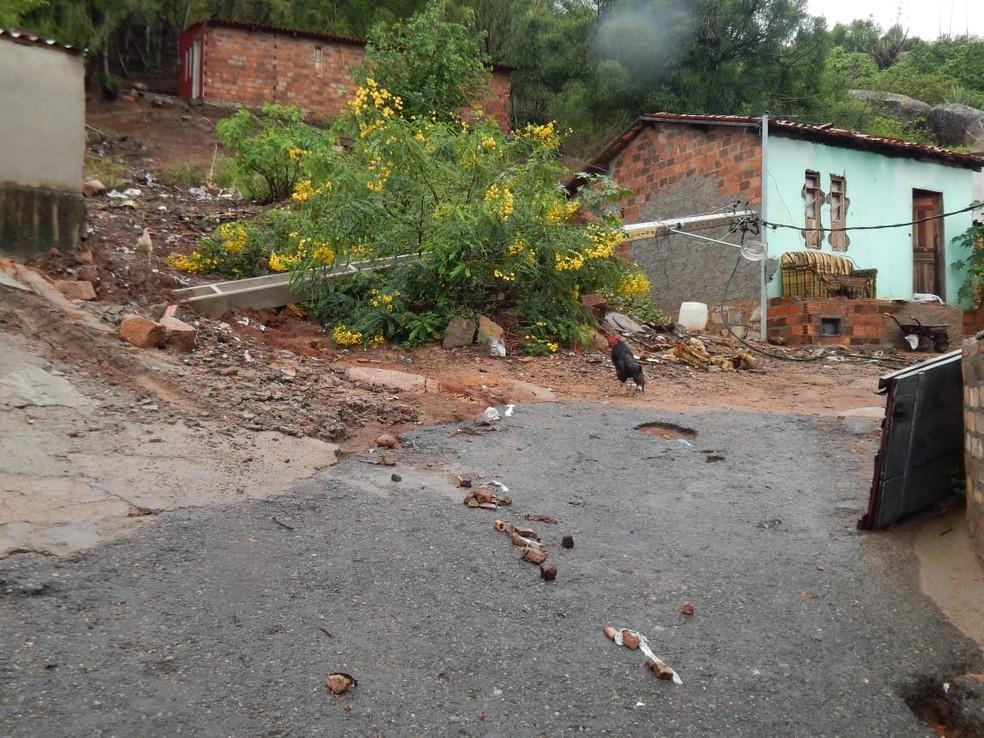 Árvores caíram após chuvas fortes em Milagres, norte da Bahia — Foto: Neto Cabral/ Arquivo Pessoal