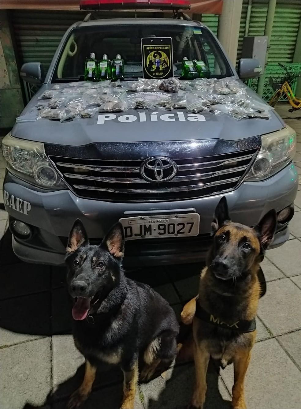 Cães do BAEP encontram drogas escondidas em barranco de São José dos Campos — Foto: Polícia Militar