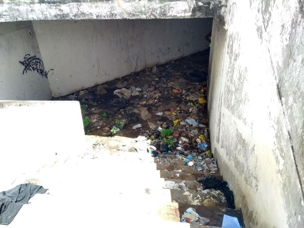 Lixo, mato, lama, escuridão e pragas urbanas compõem o cenário atual do túnel  (Foto: Lucas Cortez/G1)