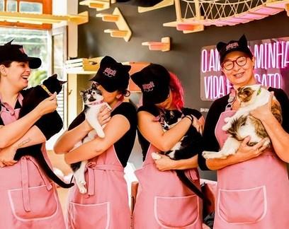 Cafeteria que promove interação com gatos tem fila na porta