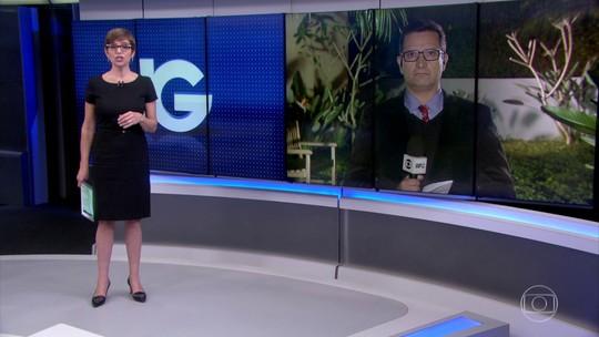 Filha de desembargador que tirou de Moro inquérito de Beto Richa tem cargo no Governo do Paraná