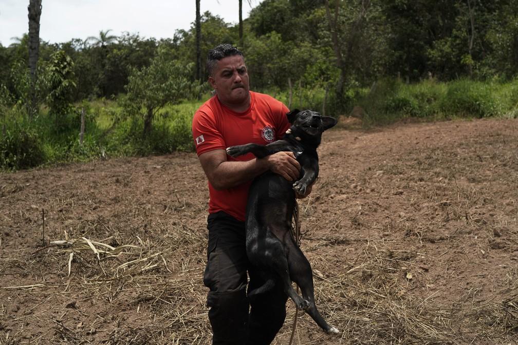 27 de janeiro - Bombeiro civil Leoncio Valverdes resgata um cachorro encontrado amarrado a uma casa, em Brumadinho — Foto: Leo Correa/AP