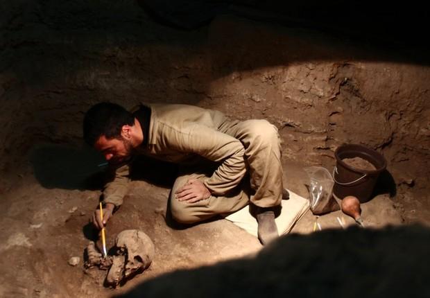 Parte dos fósseis estudados pelos pesquisadores foram encontrados no Brasil (Foto: Divulgação/André Strauss)