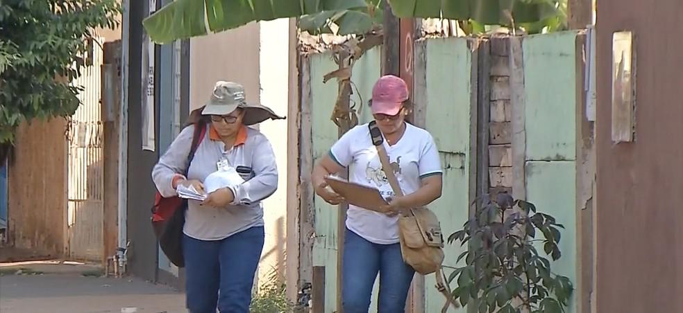Agentes de saúde intensificam ação de combate ao mosquito transmissor da dengue em MT — Foto: TVCA/Reprodução