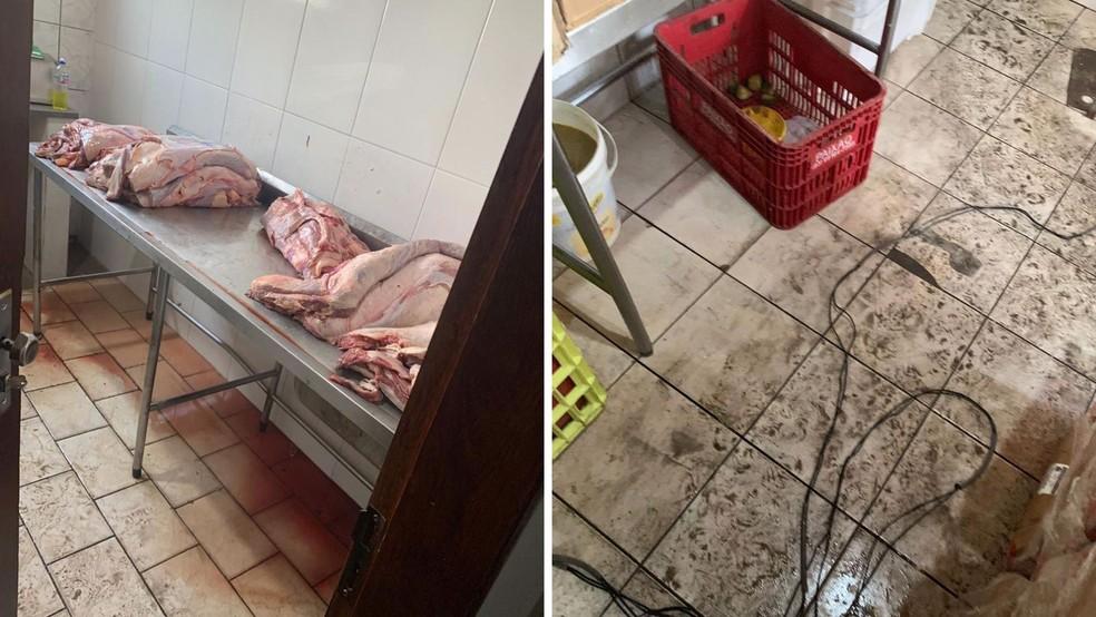 Diversas irregularidades foram constatadas durante a fiscalização— Foto: OAB Santarém/Divulgação