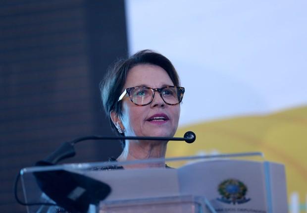 A deputada federal Tereza Cristina (DEM-MS) (Foto: Wilson Dias/Agência Brasil)
