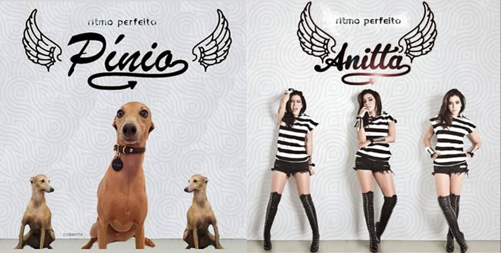 Plínio estrela capa do álbum 'Ritmo Perfeito', de 2014 — Foto: Reprodução Instagram/ Divulgação