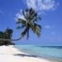 Tema: Animated Tropical Beaches