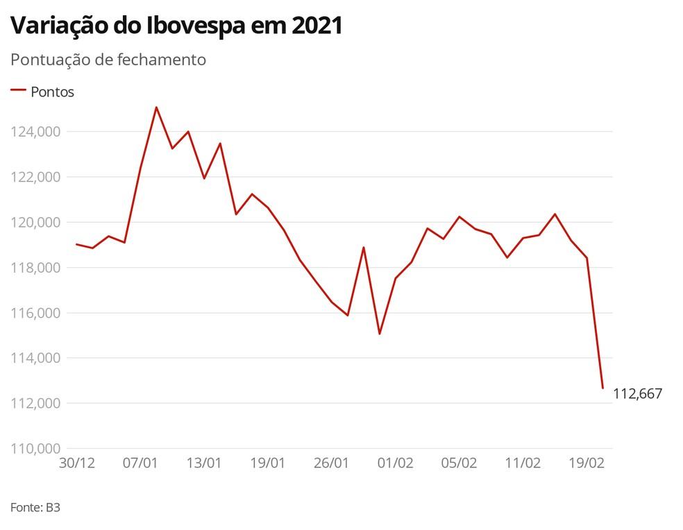 Variação do Ibovespa em 2020 — Foto: G1 Economia