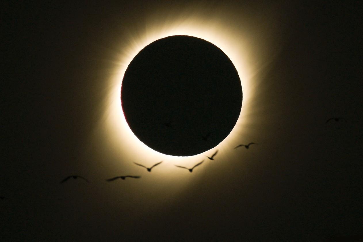 Foto do eclipse solar tirada por brasileiro é a 'imagem do dia' da Nasa