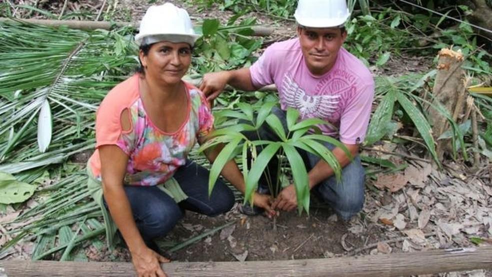 Plantio de muda de açaí durante oficina de manejo de açaizais nativos (Foto: Andreza Andrade/Bem Diverso)