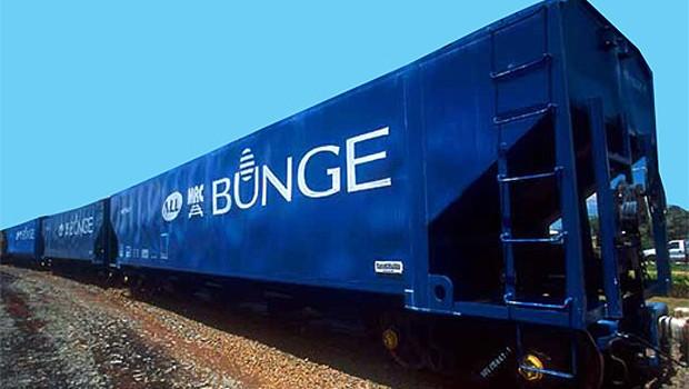 Trem de carga da Bunge (Foto: Divulgação)