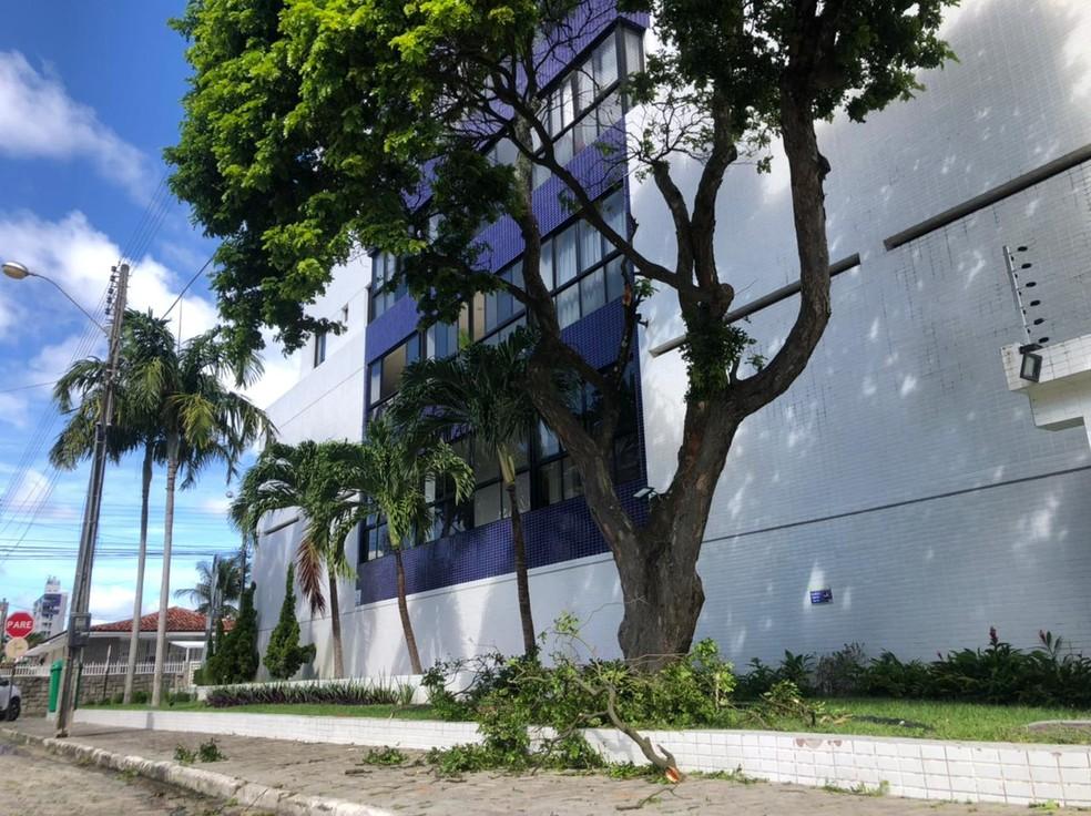 Criança morre após cair de prédio em João Pessoa — Foto: Zuila David/TV Cabo Branco