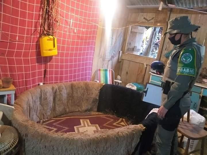 Polícia fecha rinha de galos e resgata 41 animais em Teutônia