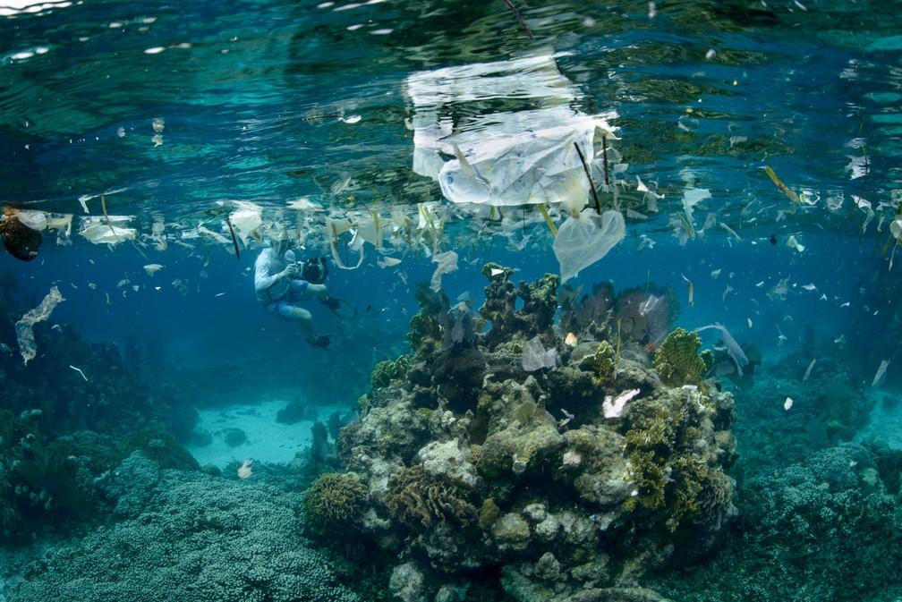 Beleza de recife no litoral de Honduras disputa espaço com as grandes quantidades de plástico: globalização da poluição (Foto: Luciano Candisani)