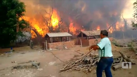 Em quatro dias, fogo consome 40km de floresta, atinge escola, fazendas e destrói plantações; veja vídeo