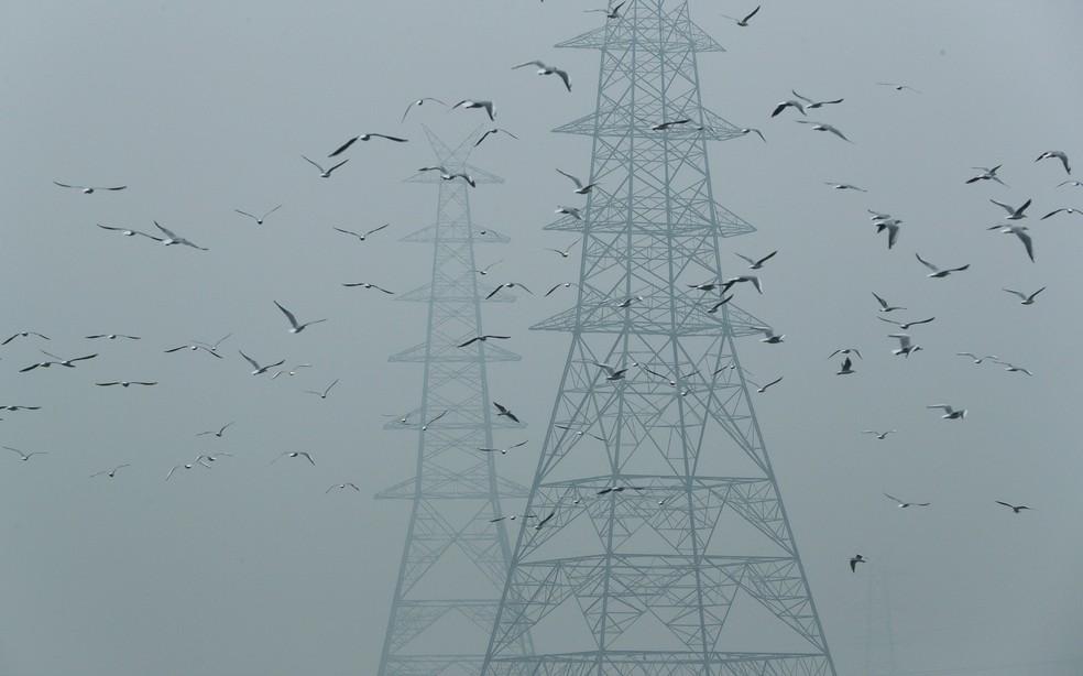 Qualidade do ar em Nova Déli se deteriorou muito nos últimos anos — Foto: Adnan Abidi/Reuters