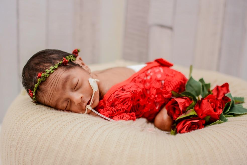 Ensaio foi feito com bebês prematuros. — Foto: Jessica Carla Fernandes