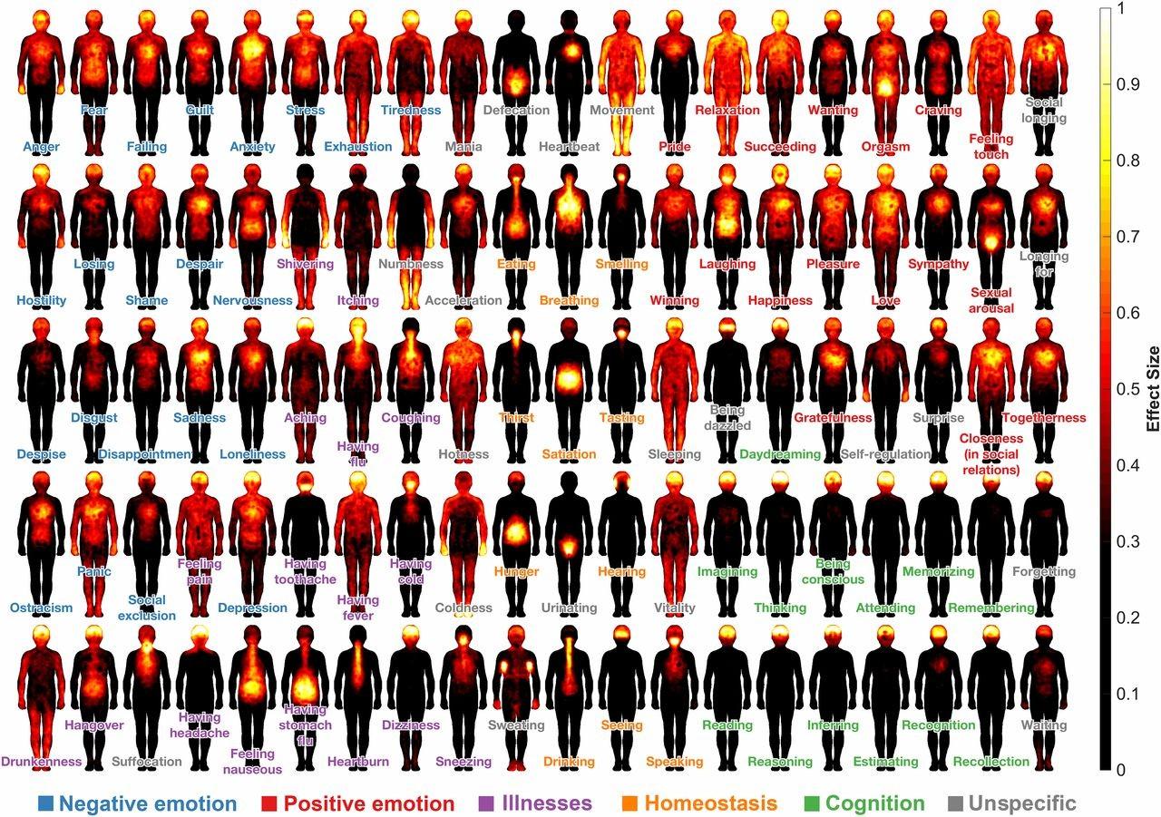 Infográfico mostra onde as pessoas geralmente sentem dezenas de sensações fisicamente (Foto: Nummenmaa et al.,PNAS)