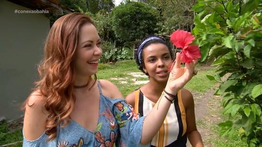 Briza Menezes conhece a variedade de flores comestíveis