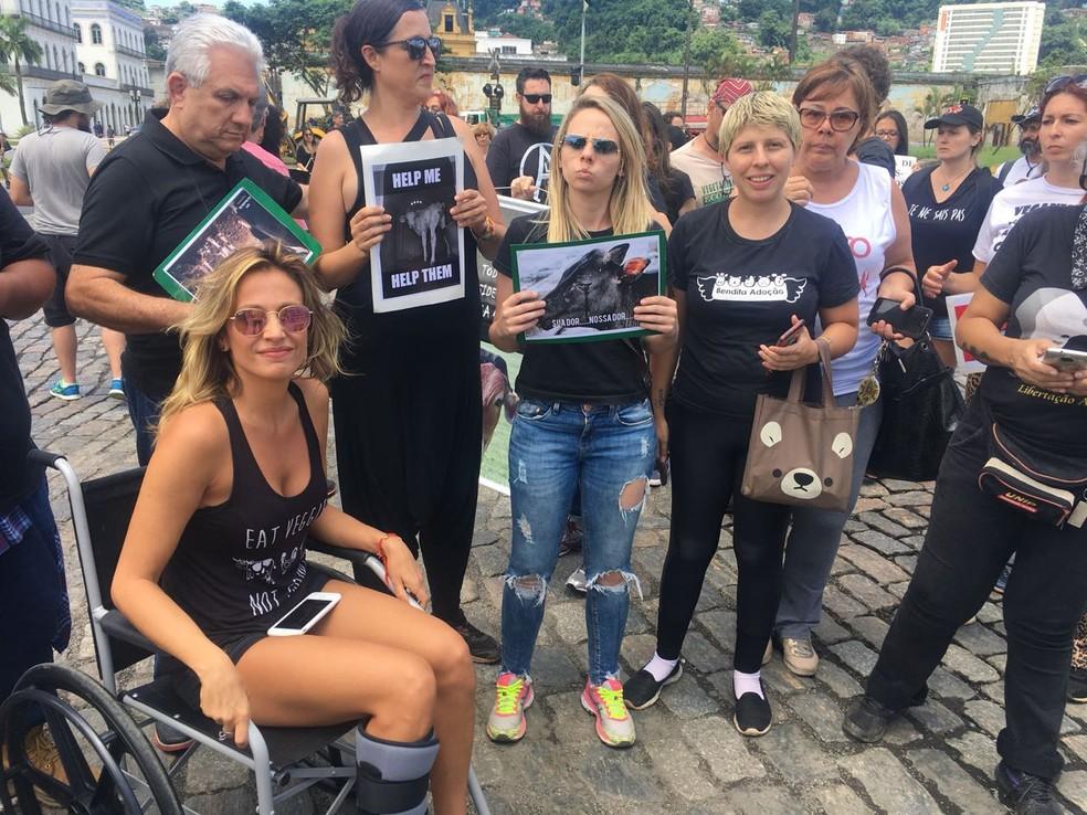 Luisa Mell se reúne com ativista em defesa dos bois embarcados no Porto de Santos, SP. (Foto: Tatyana Jorge/G1)
