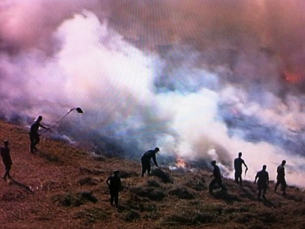 Incêndio atingiu área militar de cerrado no Setor Militar Urbano, em Brasília, na tarde desta quinta-feira (Foto: Reprodução/ TV Globo)
