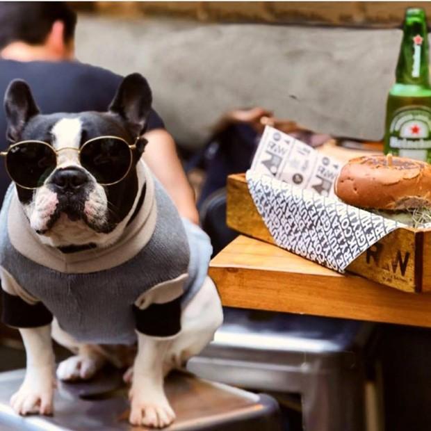 RAW Burger N Bar_pet friendly (Foto: Divulgação)