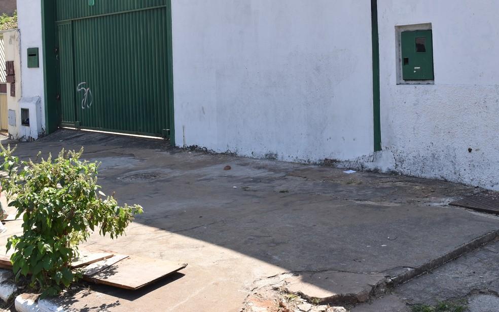 Mutios moradores não têm coragem de consumir plantas que crescem em locais onde houve contaminação (Foto: Paula Resende/ G1)