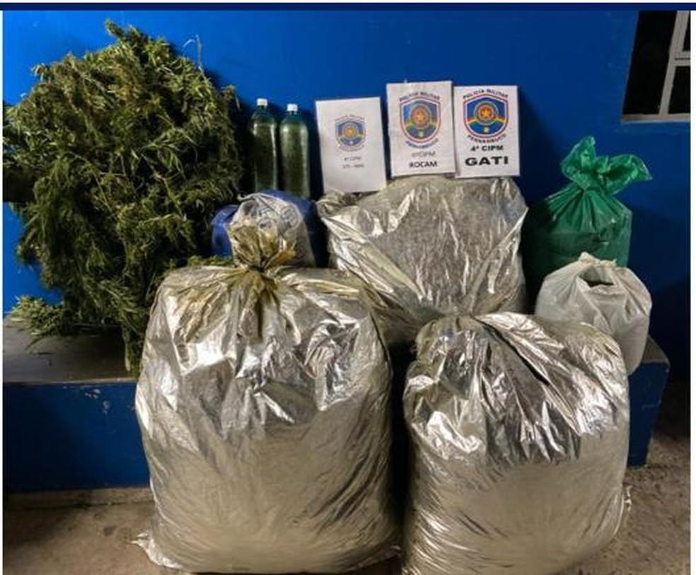 Tota de 64 kg de maconha foram apreendidas em Inajá — Foto: Polícia Militar/Divulgação