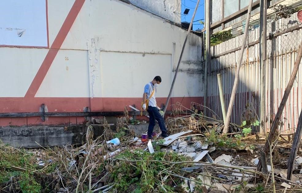 Desratização em terreno na Rua da Lama  — Foto: Divulgação/Prefeitura de Vitória