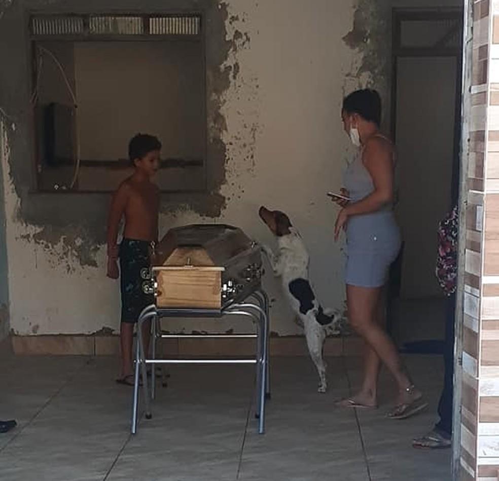 Cachorro chora e acompanha velório da tutora ao lado do caixão na Bahia — Foto: Jailson Santos