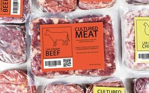 Saiba como é feita a carne de laboratório