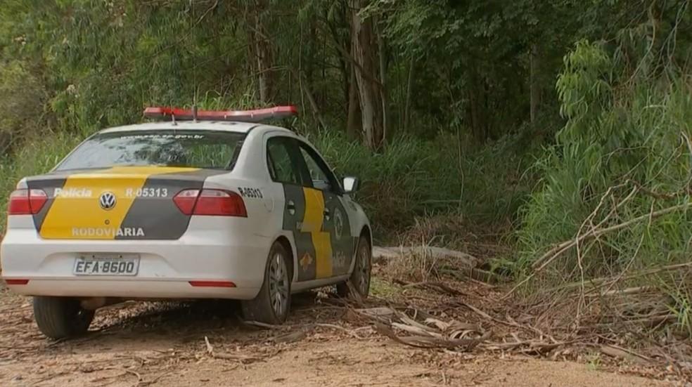 Máquinas roubadas foram encontradas em área de mata de Cerquilho (SP) — Foto: Reprodução/TV TEM