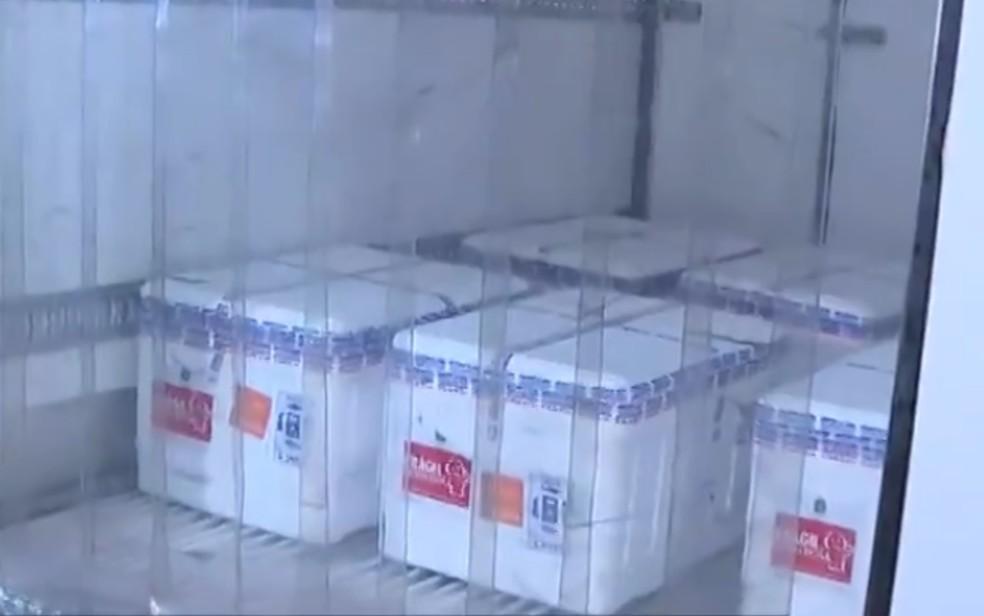 Chegada de mais 69,8 mil doses de vacina CoronaVac em Goiás — Foto: Reprodução/TV Anhanguera
