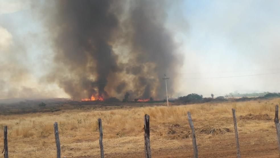 Incêndio na zona rural do Crato — Foto: Darlene Barbosa/SVM