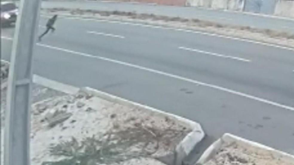Câmeras de segurança registraram o momento que o veículo atinge a menina na CE-040. — Foto: Reprodução