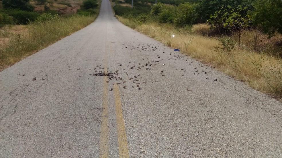 Grampos foram deixados nas pistas da região onde carro-forte foi atacado no interior do RN — Foto: Redes sociais
