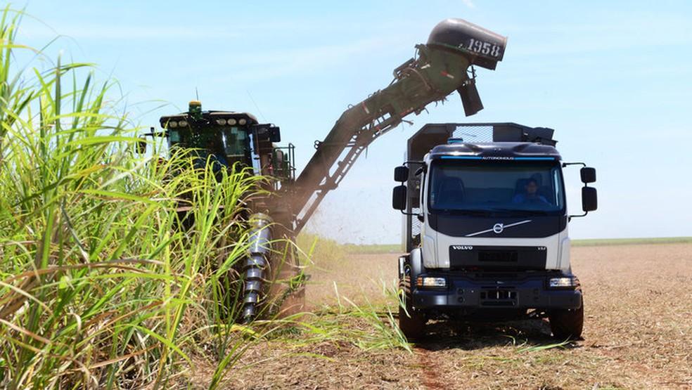 Caminhão pode andar ao lado da colheitadeira, sem passar por cima de brotos de cana — Foto: Divulgação/Volvo