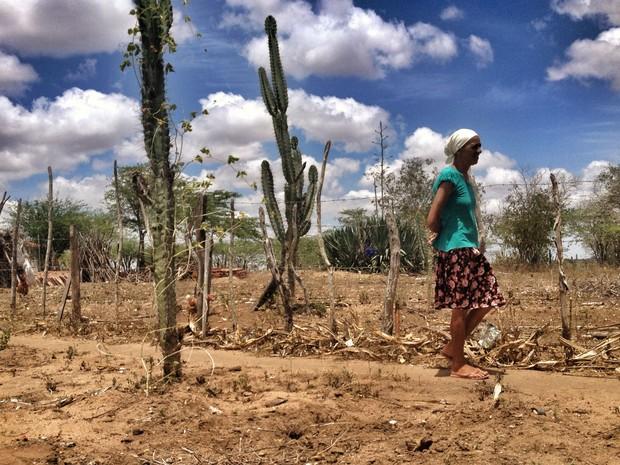 Maria do Carmo acredita que região vive o 'milênio da seca' (Foto: Henrique Mendes / G1)