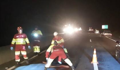 Homem morre após ser atropelado na Via Dutra, em Barra Mansa