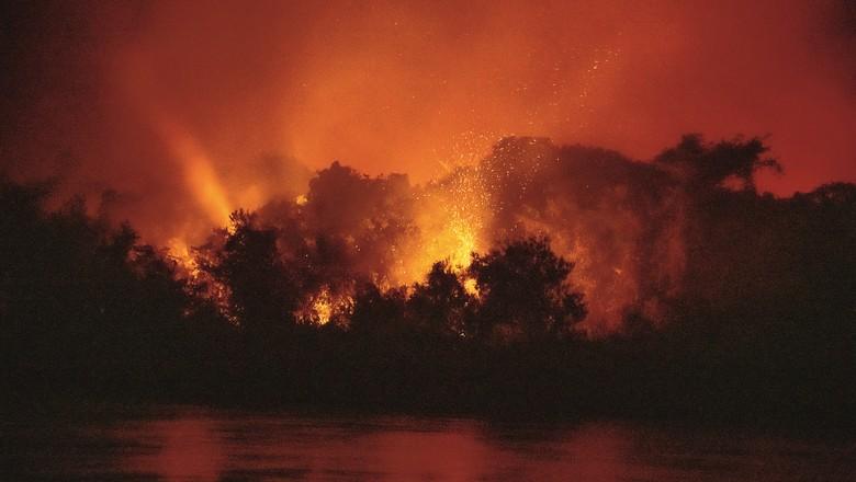 Fogo no Pantanal (Foto: José Medeiros/Editora Globo)
