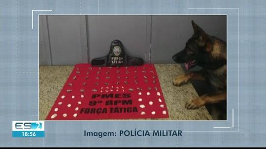 Cão encontra drogas em bairro de Cachoeiro de Itapemirim, no Sul do ES