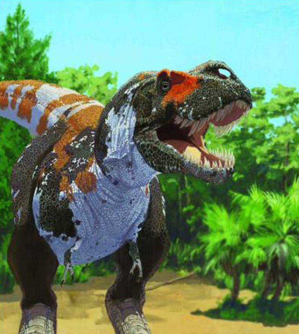 Concepção artística mostra Tyrannosaurus rex (Foto: AMNH/J. Brougham/Divulgação)