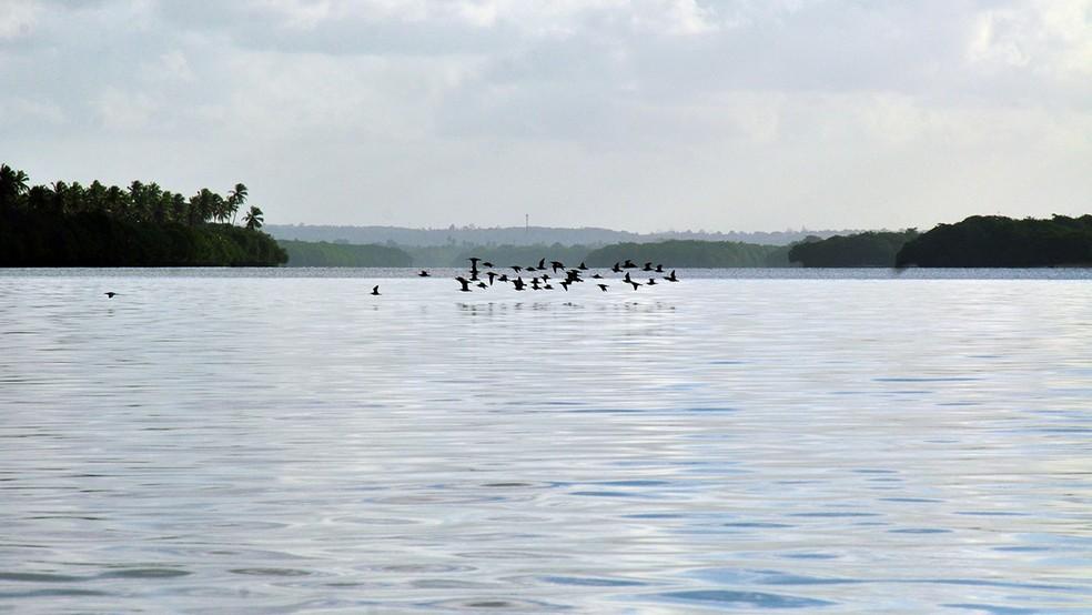 Cidade nasceu às margens do Rio Sanhauá (Foto: Dayse Euzébio/Secom-JP)