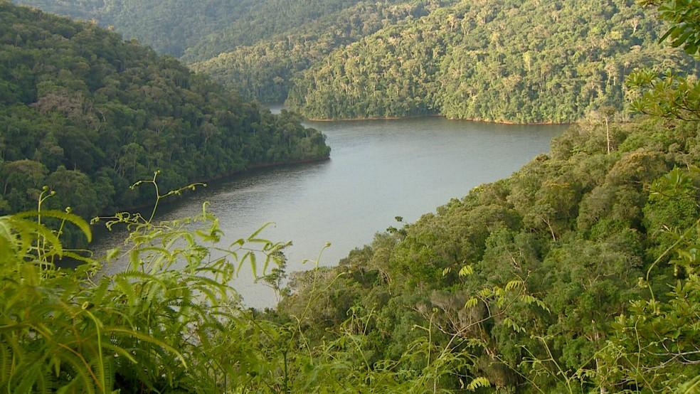 Legado das Águas é a maior reserva privada do interior de São Paulo — Foto: Toni Mendes/TG